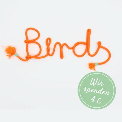 BD_1105_orange_birds