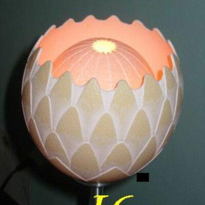 I6 (Protea)